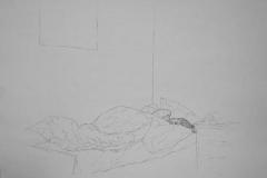 Armin-Haller---graphic-02
